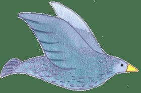 image-bird-1-1