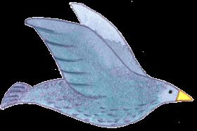 image-bird-1