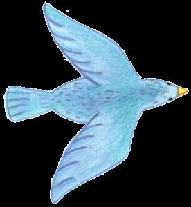 image-bird-2